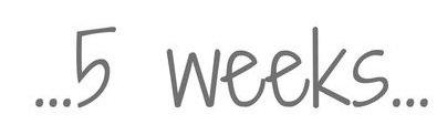 5_weeks