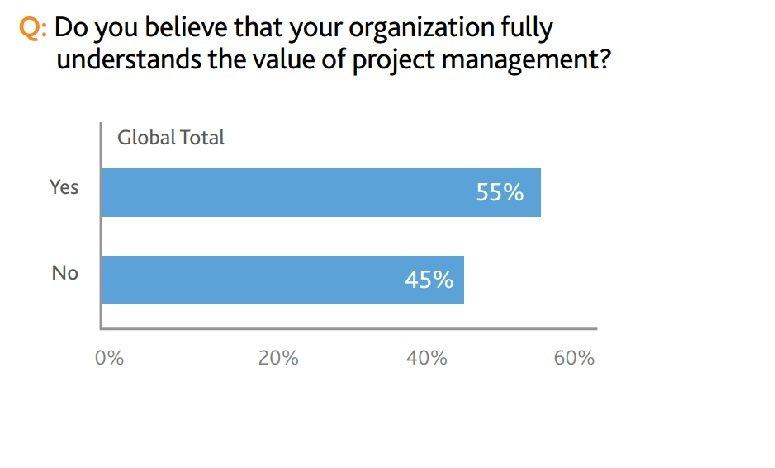 PMI_ProjectManagement_understanding