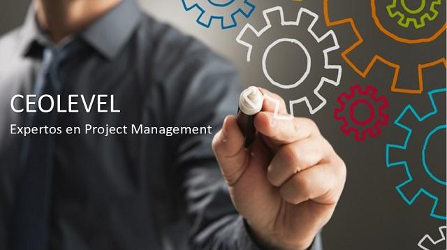 CEOLEVEL Logo_web
